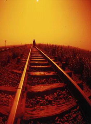 el_camino_de_la_vida